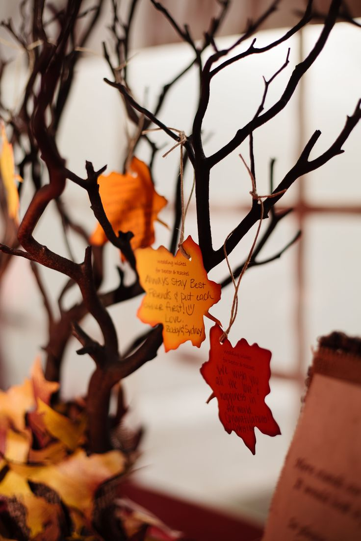 Party Idea: Adapt this Wishing Tree to a Thanksgiving Tree | Photography: AutumnAndMelinda.com