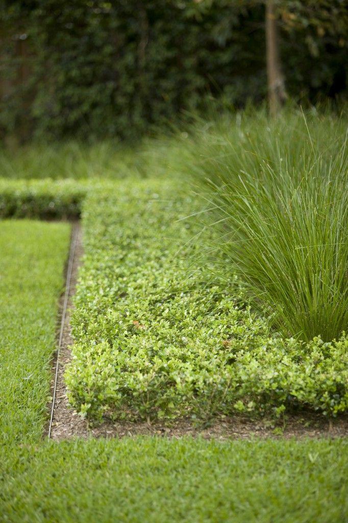 garden edge steel edge strip