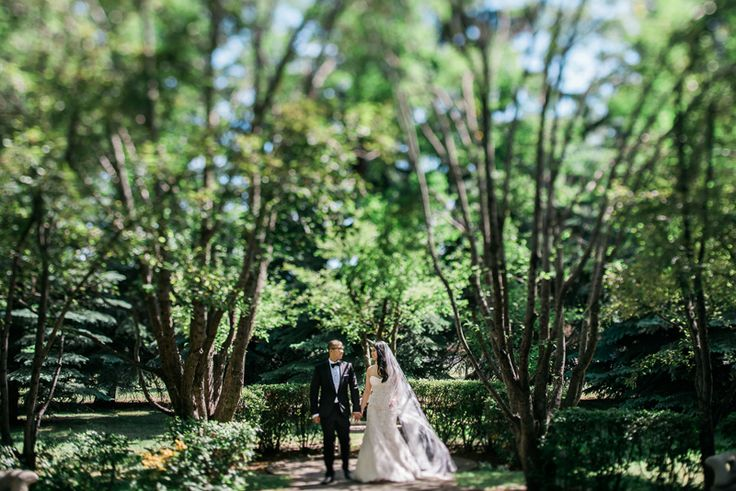 Wedding photography by Abby Plus Dave.