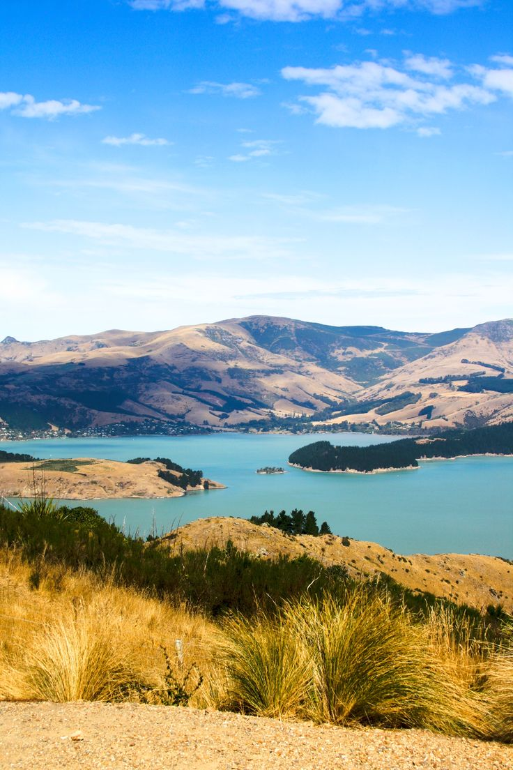 there is so much to see and do in Christchurch, New Zealand; from city, beaches, trails, and rebuild post earthquake. It's a place to stay and enjoy a while #travel www.cottercrunch.com