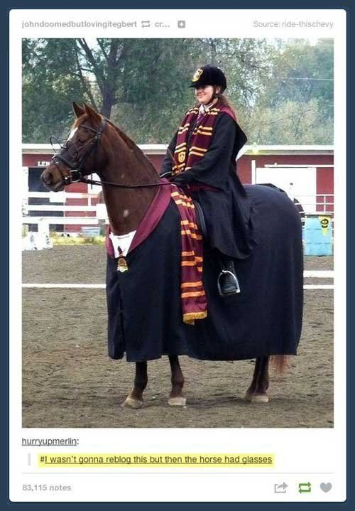 Does anyone else realize how dirty this really is? It's a girl dressed up as Ginny, riding a hourde dressed up as Harry Potter.  Think about that.