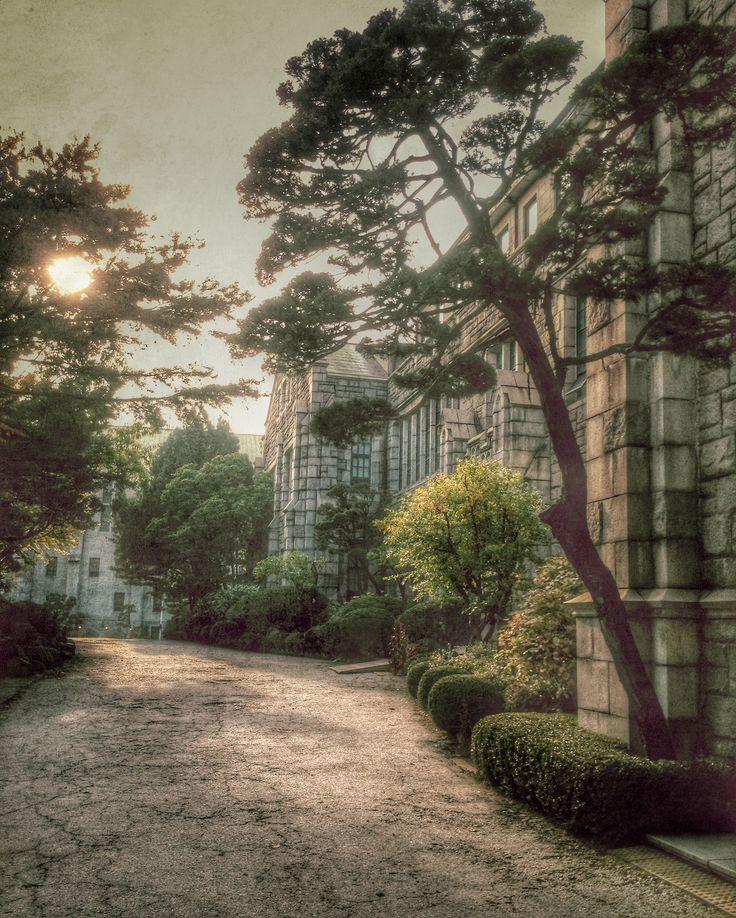 Ewha womans University'de sonbahar-south korea