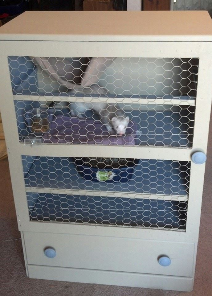 Old dresser turned ferret cage cages such pinterest for Guinea pig cage made from bookshelf