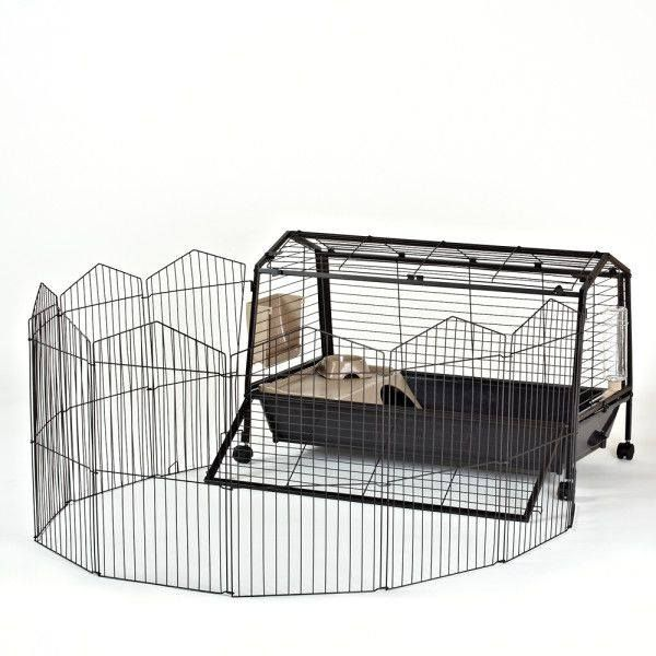 Oxbow Cage With Play Yard 75 Cage Is 47 In L X 25 In W X