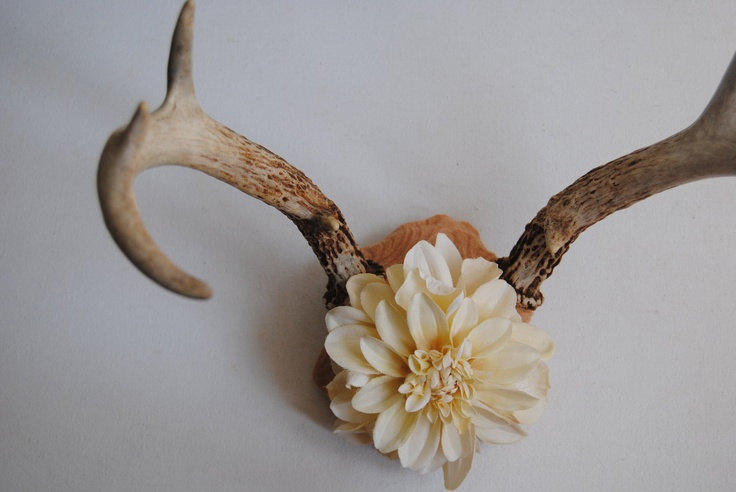 Deer Antlers With Flowers Wall Hanging Taxidermy 8 Point