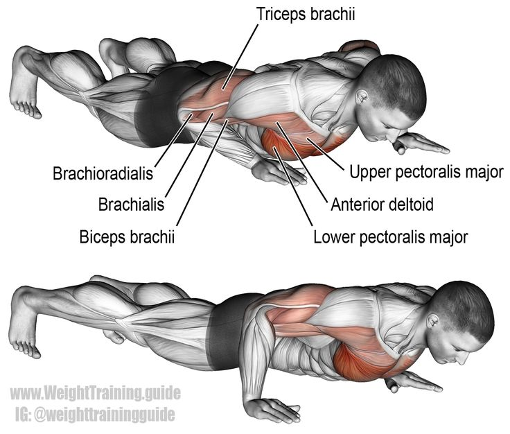 Targeting your pecs, anterior deltoids, triceps, and elbow flexors, the isometric wiper is a compound bodyweight exercise, good for burning out your chest.