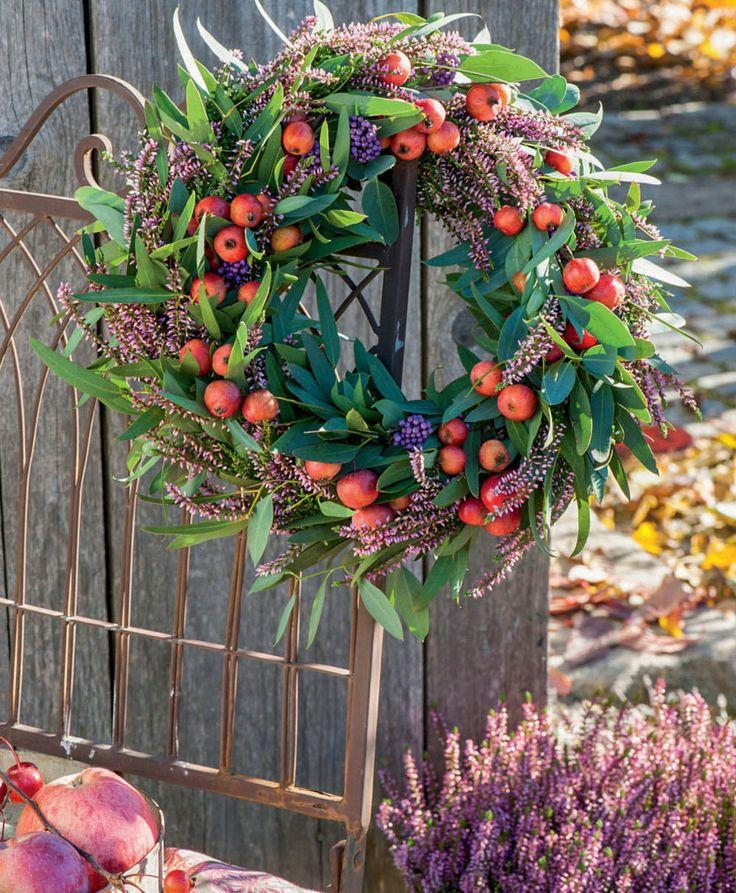 Wer jetzt Besenheide für die herbstliche Dekoration von Wohnung, Balkon oder Terrasse einkauft, kann sich bis weit in den Winter hinein an der pflegeleichten Pflanze erfreuen.