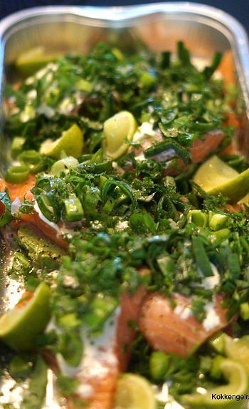 kokkengeir | Laksefilet i det Grønne.