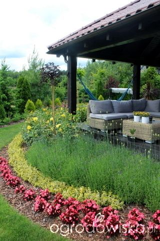 Forum Ogrodnicze   Ogrodowisko · Landscape DesignsGarden DesignHedgesYard  DesignYard DesignLandscape DesignLandscape Architecture Design