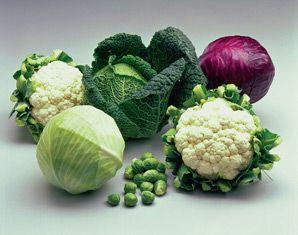 groenten die helpen tegen oestrogeendominantie
