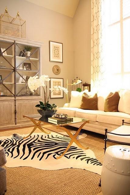 It All Appeals to Me: Zzzzzz Zebra Rugs