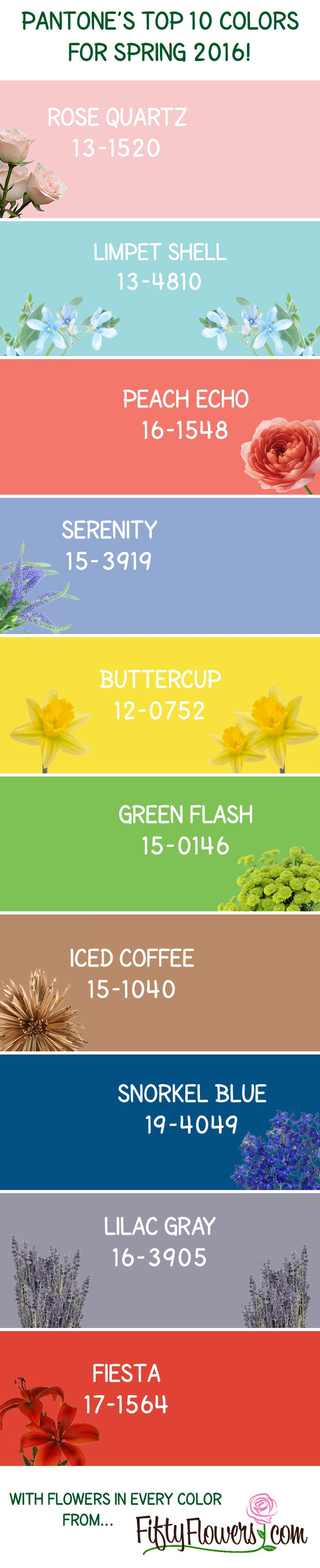 the 111 best images about wedding color palettes on pinterest