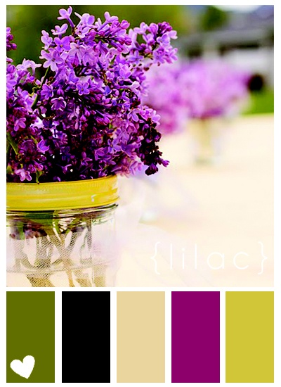 Purple and green color palette - Something unexpected and energizing for  the lobby?