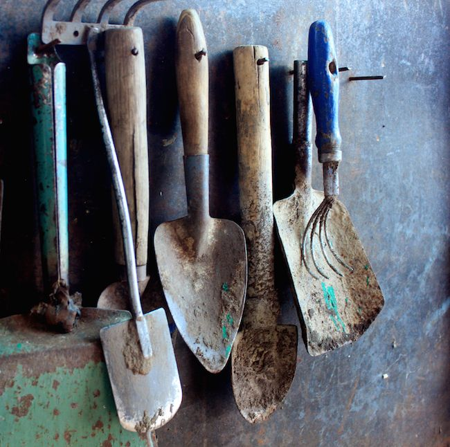 Garden Tools Art Prints Canvas Prints Cards And Posters