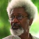 Wole Soyinka on Twitter. (Wole Soyinka wrote the intro to our edition of Soldiers in Hiding by Richard Wiley.)