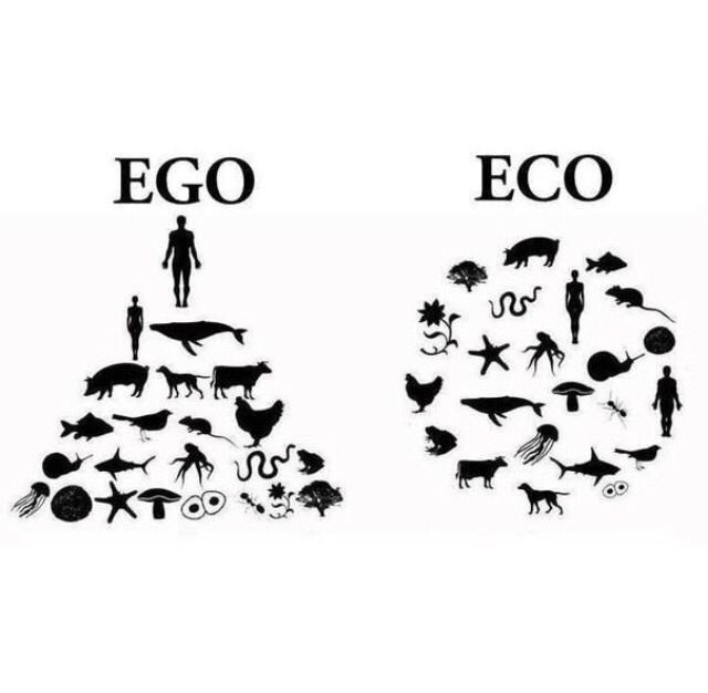Ego vs Eco: rethinking our place in the world  F&O Forgotten Nobility