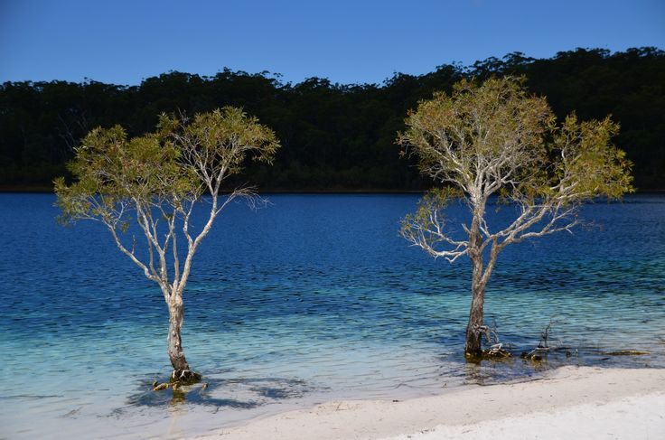 McKenzie tó Fraser Island-en