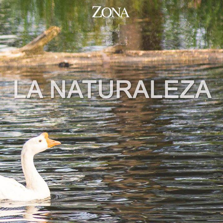 #ZonaE es para personas amantes de los espacios abiertos, la naturaleza y los paisajes paradisíacos.