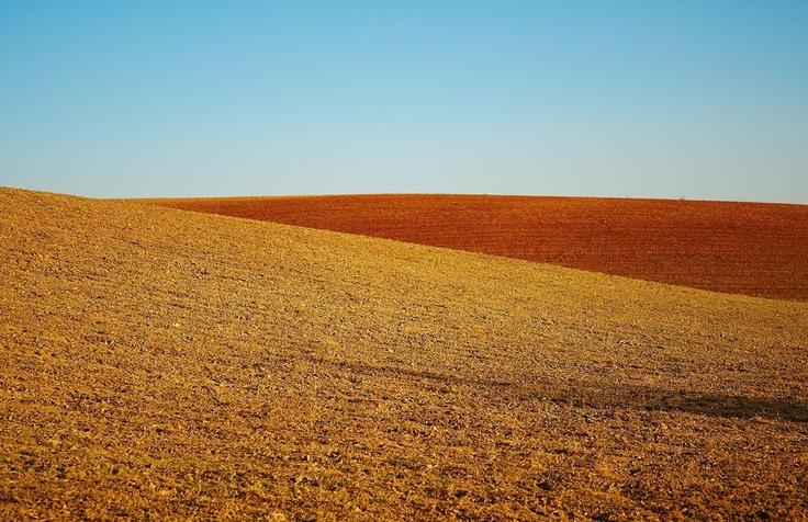Landscape_09 by Pedro  Pinho, via 500px