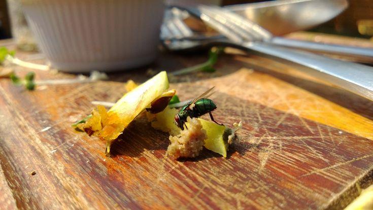 I přesto, že důkladně vyčistíme kuchyni, cítíme občas divný zápach kvůli uskladněnému česneku, cibuli a bramborám.