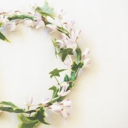 Learn how to make this sweet and delicate fresh flower crown DIY tutorial. Perfect for any Spring photoshoot!