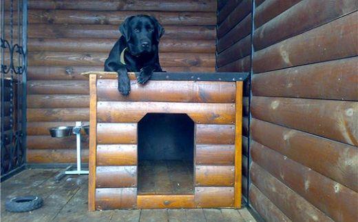 На фотографии представлено внутреннее пространство вольера для собаки, в том числе будка