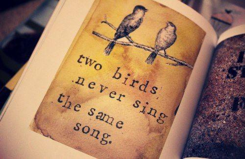 dos pajaron nunca cantan la misma cancion