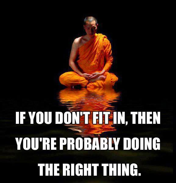 If you don't fit in then you're probably doing the right thing | Anonymous ART of Revolution