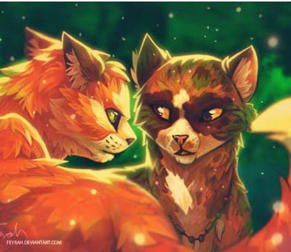 Spottedleaf And Fireheart Warriorcats Warrior Cats Art