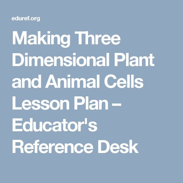 Making Three Dimensional Plant and Animal Cells Lesson Plan – Educator's Reference Desk