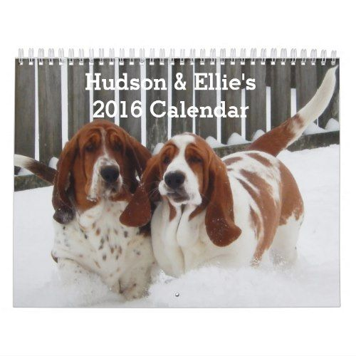 Cute and Funny Basset Hound Calendar for 2016