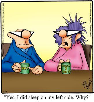"""Spectickles"" Cartoon A Day - Bed Head - Bill Abbott Cartoons"