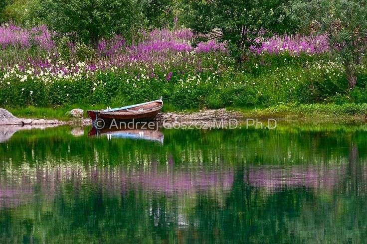 Top selling. Views: 15003. Facebook .Like 343 . Valnesfjordvatnet . Norway . by Andrzej Goszcz.  This image Has Been S O L D .  Super miracle . by © Andrzej Goszcz,M.D. Ph.D