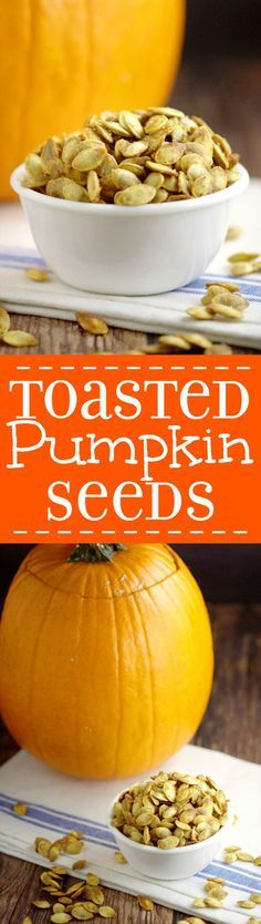 Don't throw out your pumpkin seeds! Toasted Pumpkin Seeds are a delicious and…