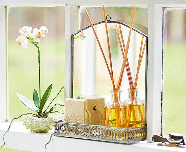 Artificial Shell Potted Orchid (2)   Bloom Perfect for adding the finishing touch to your dressing table