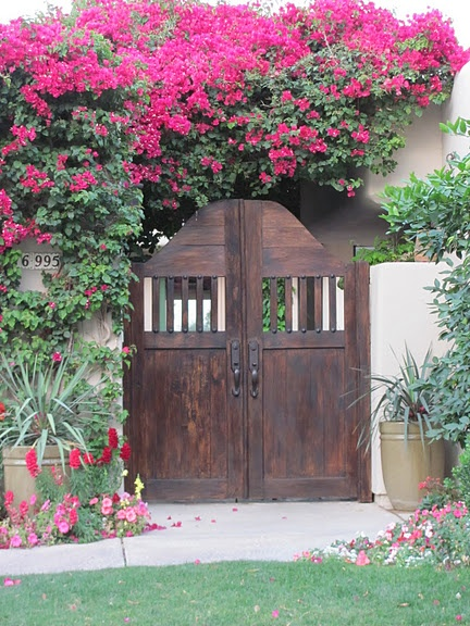 I love the Spanish style wooden gate with the vibrant colored flowers.