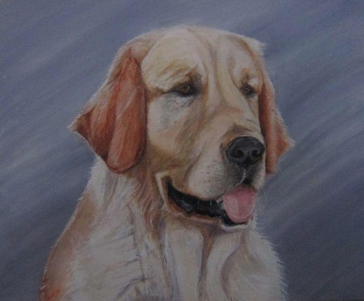 schilderij hond Golden Retriever Jelle door Edith Mulder op facebook Reset your wall