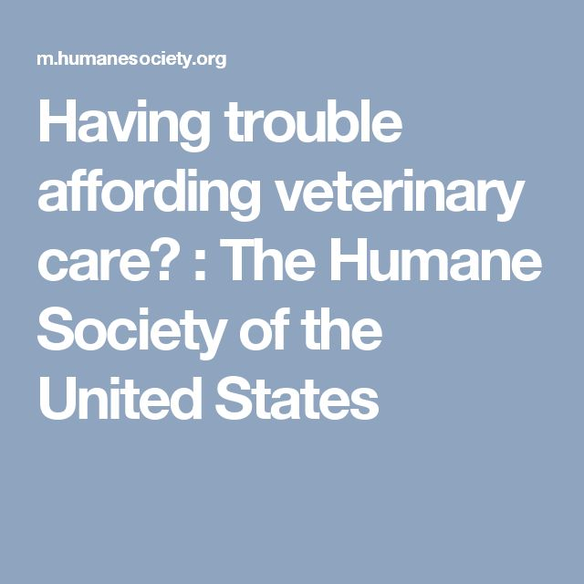 Having Trouble Affording Veterinary Care The Humane Society Of