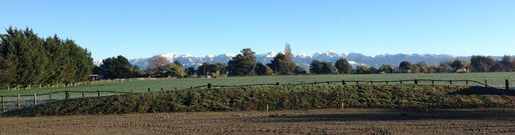 Beautiful morning at Steens yard, Masterton.