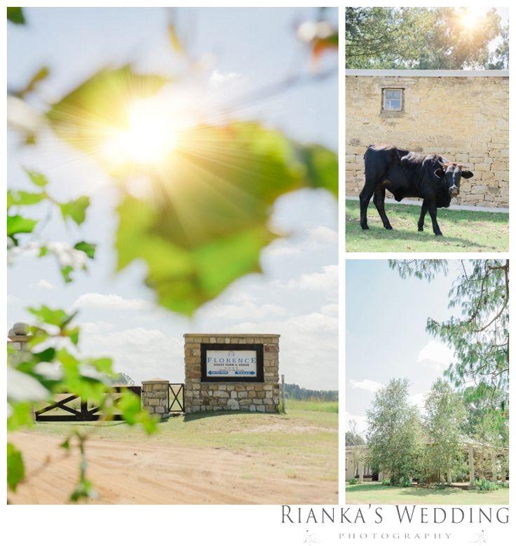 riankas wedding photography dore carl florence guest farm00003