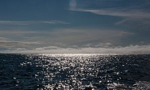 Eight member states including US, Russia, Canada, Norway and Denmark sign accord to protect central Arctic Ocean from commercial fishing