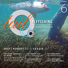 Tail Fly FIshing Magazine - Issue 6 JULY 2013 - There is a free saltwater fly tying video in every issue.  Brought to you by Flyfishbonehead