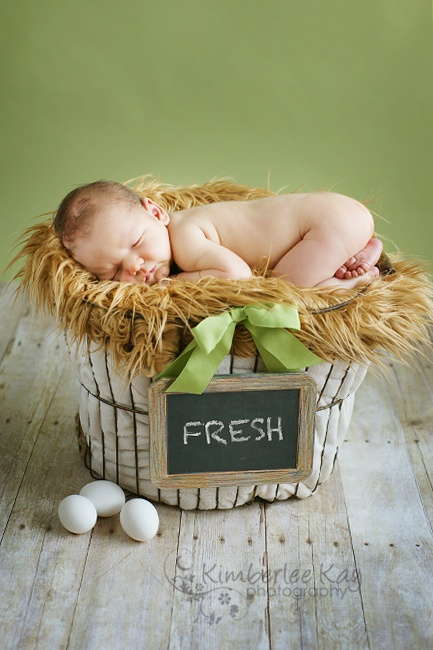 Adorable picture of a baby in a basket....if only they arrived this easily:)Chalkboard Signs, Eggs Baskets, Baby Baskets, Lion Costumes, Kids Baby, Baby Photography Baskets, Adorable Pictures, Baby Boy, Newborns Ideas