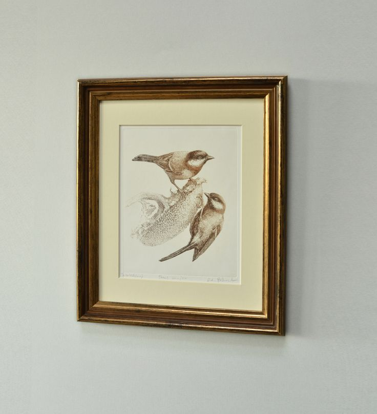 #tit in sepia #AdamPoltorak #copperplate