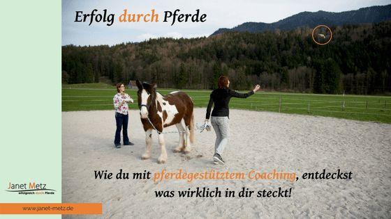 Du fragst dich vielleicht, in welchem Zusammenhang Erfolg mit Pferden steht?  Der Umgang mit Pferden und das Feedback, dass wir von ihnen für unsere Handlungen bekommen macht uns über uns selbst bewusster. Es zeigt unsere Schwächen aber vor allem […]