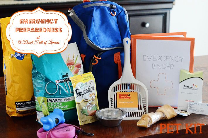 Don't forget about your beloved pets in the event of an emergency! Great packing lists and ideas to make sure you and your pets are taken care of. Via A Bowl Full of Lemons