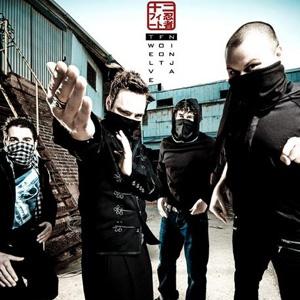 Twelve Foot Ninja. Get them into your ears.