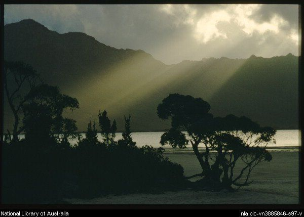Truchanas, Olegas, 1923-1972 Teatrees and lower forests make a shadowy foreground for the Frankland Range, Lake Pedder