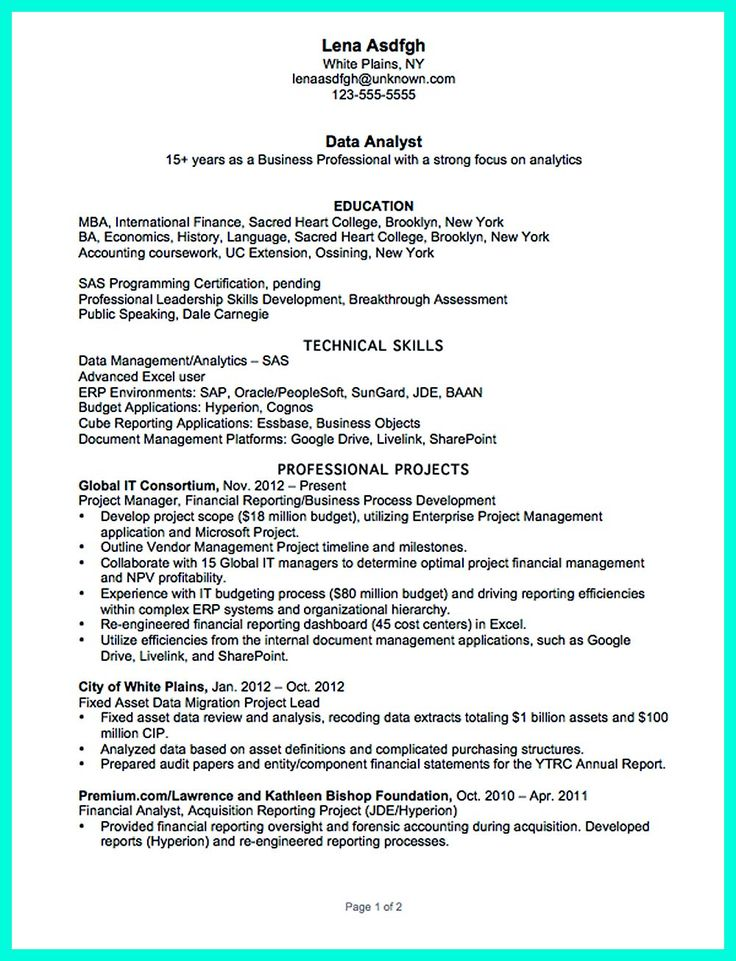 Business Analyst Resume Summary Examples Data Entry Resume Sample