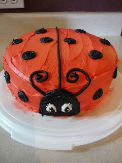 Ladybug Cake: Jo's 1st bday cake. Couldn't get the frosting red, so it was a pink ladybug!